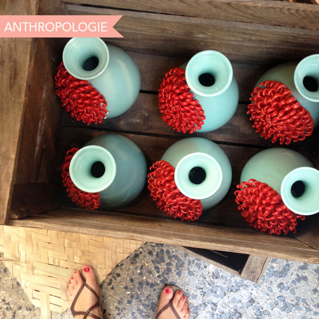 Anthropologie3
