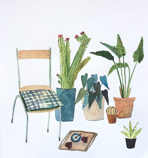 Elizabeth-Barnett-plants2